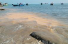 Vết nước 'lạ' ở biển Quảng Bình là do xác vi sinh vật phân hủy