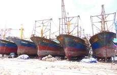 Tàu vỏ thép hư hỏng: Hỗ trợ ngư dân kiện ra tòa