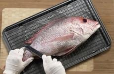 Lấy củ cải chà khắp mình cá, hiệu quả hơn cả mong đợi