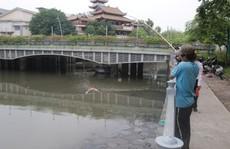 Kênh Nhiêu Lộc - Thị Nghè lại thành dòng 'kênh chết'