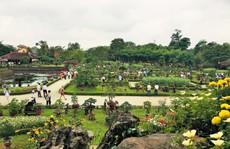 Ngắm tác phẩm bonsai cả nước hội tụ 'đọ dáng' trong vườn Cơ Hạ