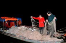 'Quái ngư' sông Đà và cuộc 'vật lộn' ly kỳ giữa người với cá