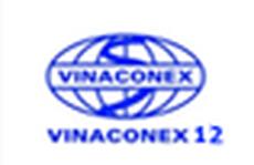 Vinaconex 12 mắc sai phạm về tài chính