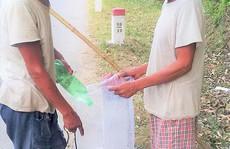 Theo 'rái cá' đi săn cá trên sông Đakrông