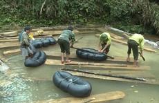 Phó chủ tịch huyện bị khiển trách vì để mất rừng