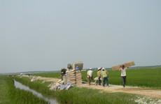 Quảng Bình: Phát hiện hàng loạt công trình nông thôn mới sai phạm