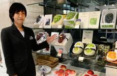 Vì sao trái cây Nhật giá đắt không tưởng?