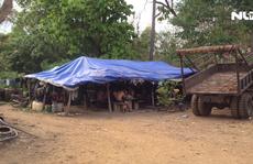 (VIDEO)- Gỗ lậu Phượng 'râu' và cung đường 'con voi chui lọt lỗ kim'