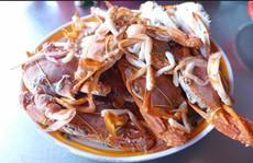 Khám phá về ghẹ đỏ, đặc sản nổi tiếng biển Việt Nam