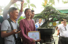 Cây Linh sam 500 triệu của danh hài Hoài Linh đạt giải nhất cuộc thi bonsai