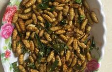 'Ngã bổ ngửa' với đặc sản côn trùng vùng cao Tây Bắc