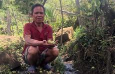Sự thật về suối 'nước đắng' chữa bệnh ở Kon Tum