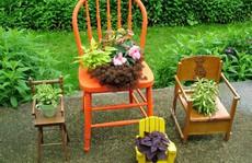 Tận dụng đồ bỏ đi trang trí khu vườn mùa hè xanh mát