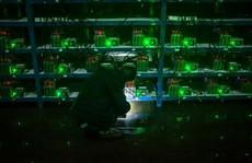 Cuộc sống của thợ đào tiền ảo Trung Quốc