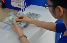 Giá USD tăng mạnh, giao dịch vẫn ổn