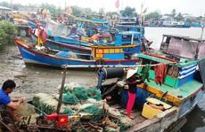 UBND TP HCM ra 4 quyết định, duyệt quy hoạch Khu Đô thị lấn biển Cần Giờ