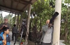 """Chuyện những """"vệ sĩ"""" bảo vệ đàn voọc gáy trắng ở Quảng Bình"""