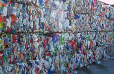 Doanh nghiệp nhựa kêu có thể phá sản do container phế liệu 'nằm' cảng