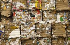 Những tỉ phú biến rác thành 'vàng' trên thế giới