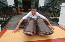 'Choáng' với cặp cá leo nặng hơn 1 tạ