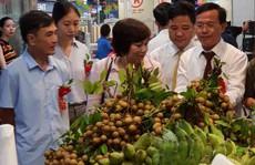 Trái cây miền Bắc dồn dập vào siêu thị
