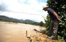 Sạt lở nghiêm trọng ở Lâm Đồng
