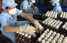 NHÌN TỪ THƯƠNG VỤ BA HUÂN - VINACAPITAL: Doanh nghiệp Việt ra biển lớn bằng thúng chai!