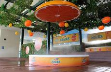 Spa Nhật cho khách tắm trong rượu vang, nước cam