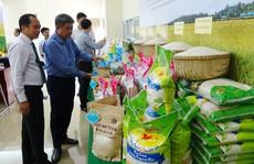 """Từ nay, người tiêu dùng an tâm với gạo sạch """"Ruộng nhà mình"""""""