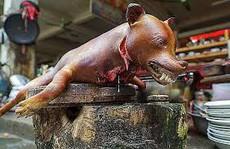 Nói không với thịt chó: Đừng làm 'khơi khơi'!