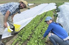 Lớp học nông nghiệp hữu cơ ngày càng 'hot' ở Mỹ