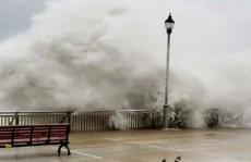 (Video)- Sức tàn phá kinh hoàng của siêu bão Mangkhut khi đổ bộ đất liền