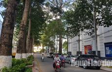 Kiến nghị kiểm điểm chủ tịch UBND TP Trà Vinh