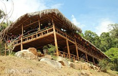 Dựng nhà gỗ lớn giữa rừng, không cần đến đinh