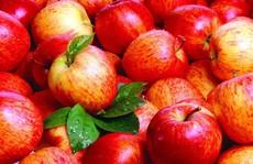4 loại rau quả là 'vua' thải độc và trẻ hóa nên ăn