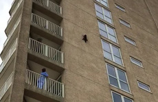 Gấu mèo rớt từ lầu 9, tiếp đất êm ái và lành lặn