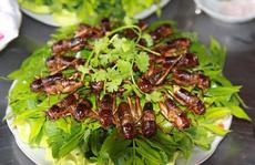 Dế chiên nước mắm ở Long Khánh ăn là ghiền