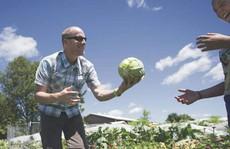 Người tạo xu hướng nông nghiệp organic tại Mỹ