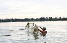 Đua nhau săn con cá 'nhỏ nhưng độc' ở  đầm Chuồn