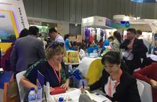 Việt Nam là điểm đến ưa thích của du khách Nhật