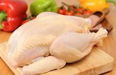 Vì sao một số bộ phận trên cơ thể gà lại không nên ăn?