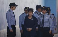 Bà Park bị chồng chất thêm tội