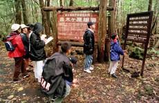 Khu rừng 'rợn tóc gáy' ở Nhật Bản