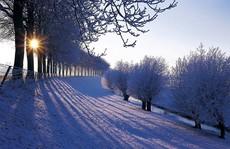 Đẹp nao lòng mùa đông ở Hà Lan