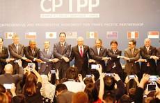 'Thuốc giải' CPTPP