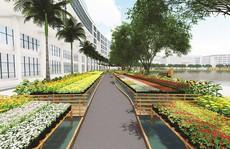 Hội chợ hoa Xuân Phú Mỹ Hưng 2019: Hoa về trên phố thị