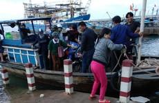 Vụ 'người ơi, đừng về Tam Hải nữa': Huyện họp xử lý khẩn