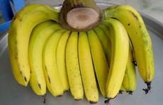 Phân biệt trái cây ngậm hóa chất tránh mua nhầm dịp Tết