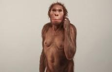 Vấp khúc xương, cậu bé phát hiện tổ tiên 'mất tích' của loài người