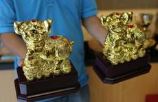 Cận cảnh tượng heo vàng đang gây sốt dịp Tết Kỷ Hợi